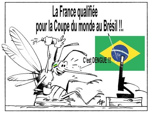 dengue mondial Brésil blog