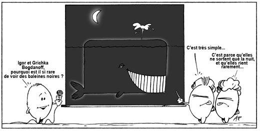 baleines noires blog
