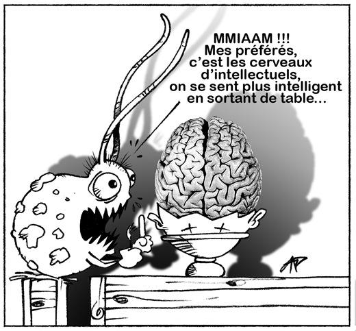 cerveau dévoré par une amibe blog 4 modif dessin