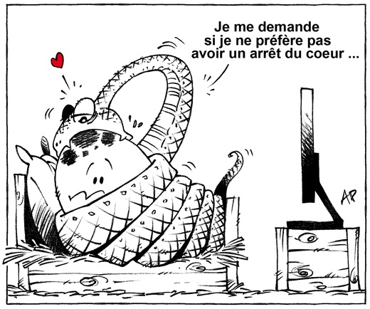 python stimulateur cardiaque blog