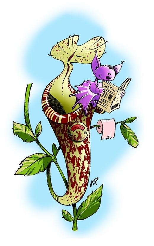 plante carnivore Pierre def mail